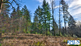22173 E Moen CT, Rhododendron, OR 97049