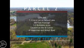 0 Hagerman Road - Parcel 2, Addison twp, MI 48367