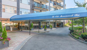 20 Old Mamaroneck Road #3e, White Plains, NY 10605
