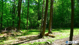 Clove Road, Blooming Grove, NY 10914