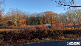 91 Whittaker Road, Monticello, NY 12701