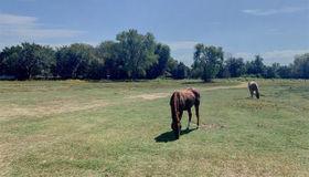 4142 Middlefield Road, Dallas, TX 75253