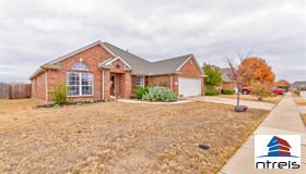 4728 Auburn Ridge Drive, Fort Worth, TX 76123