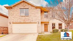 10109 High Eagle Trail, Fort Worth, TX 76108