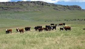 2015 Cow Creek Road, Jordan Valley, ID 83650