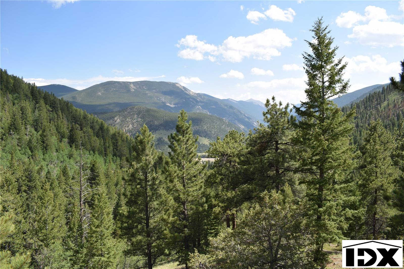 Main Mine: Allen Placer - 2173 12 Acresuu 21-3-74 PT 31 Street, Empire, CO 80438 now has a new price of $349,000!