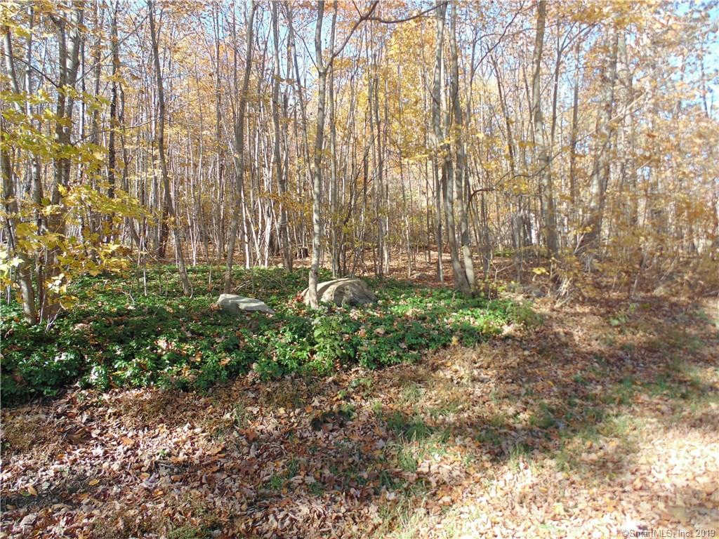Lot 6-9 Ashford Lake Drive, Ashford, CT 06278 is now new to the market!