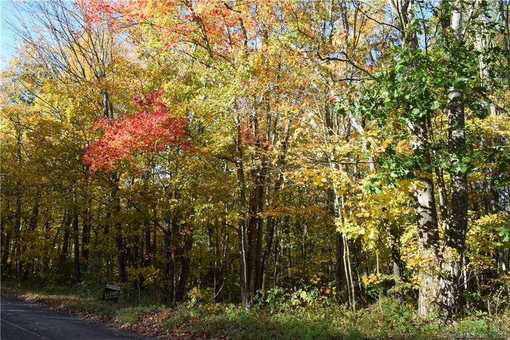 Lot 15 Chohees Trail, Woodbury, CT 06798 is now new to the market!