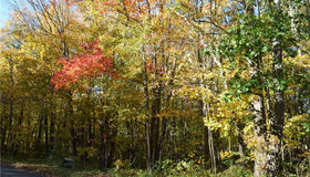 Lot 15 Chohees Trail, Woodbury, CT 06798