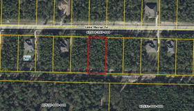 132 Lake Merial Trail, Southport, FL 32409