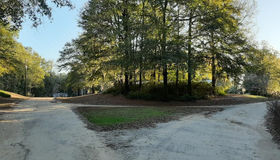 0 Birch Drive, Summerton, SC 29148