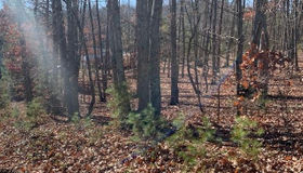 2606/2622 Rocky Knob Road, Connelly Springs, NC 28612