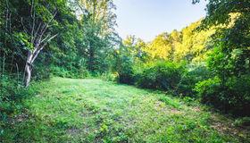 2560 Lower Flat Creek Road, Black Mountain, NC 28711