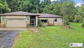 10822 E Revels Road, Howey IN The Hills, FL 34737