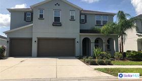 33258 Azalea Ridge Drive, Wesley Chapel, FL 33545