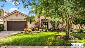 3813 Golden Feather Way, Kissimmee, FL 34746