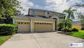 3113 Conrad Court, Kissimmee, FL 34744