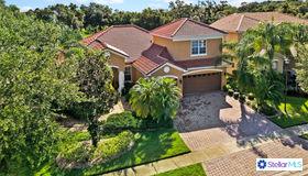 3517 Sunset Isles Boulevard, Kissimmee, FL 34746
