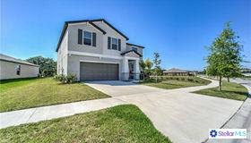 13203 Wildflower Meadow Drive, Riverview, FL 33579