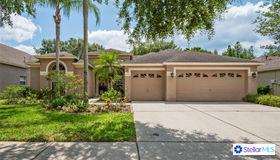 10207 Timberland Point Drive, Tampa, FL 33647