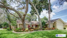 2911 Pinewood Run, Palm Harbor, FL 34684